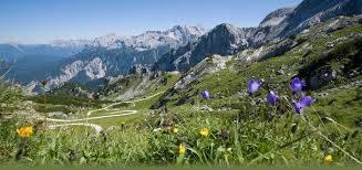 Alleinerziehende-Garmisch