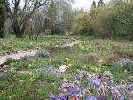 Singletreff Botanischer Garten Frankfurt